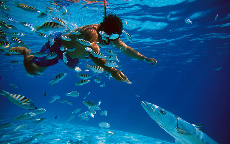 andaman package from bangalore