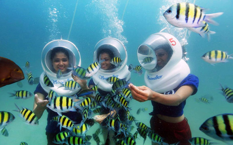 andaman tour package from mumbai