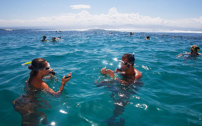 Best Activities In Andaman